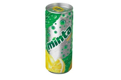 MintaLemon_422_feature